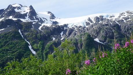 氷河 アラスカ Seward アメリカ 68の写真素材 [FYI03139893]