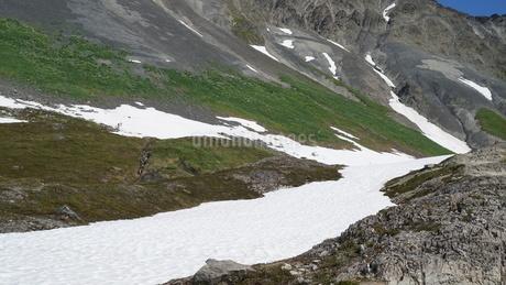 氷河 アラスカ Seward アメリカ 82の写真素材 [FYI03139914]