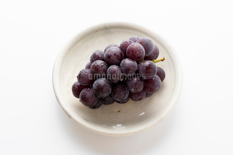 お皿に乗った水滴のついた美味しそうな巨峰の写真素材 [FYI03140137]
