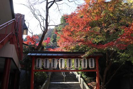 秋の山寺の写真素材 [FYI03140341]
