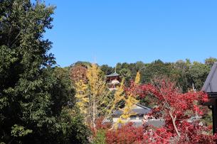 秋の山寺の写真素材 [FYI03140345]