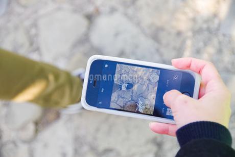 ハートの石があるところで記念にスマホで撮影の写真素材 [FYI03140522]