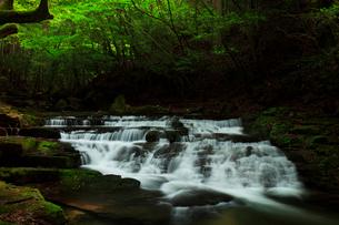 赤目四十八滝 雛段滝と新緑の写真素材 [FYI03140866]