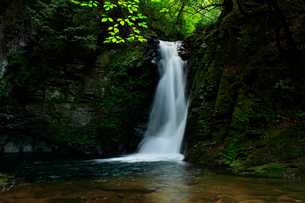 赤目四十八滝 琵琶滝の写真素材 [FYI03140869]