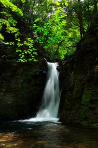 赤目四十八滝 琵琶滝の写真素材 [FYI03140871]
