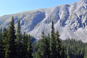 アメリカ合衆国コロラド州ロッキーマウンテンの樹木限界線付近の風景の写真素材 [FYI03140946]