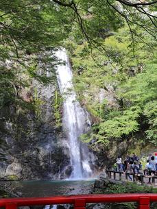 瀧見橋から眺める箕面大滝の写真素材 [FYI03140984]