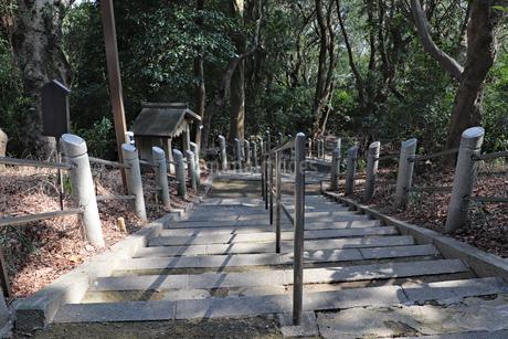 登山道を下るの写真素材 [FYI03141113]