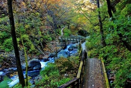 日光の名瀑 裏見の滝の写真素材 [FYI03141125]