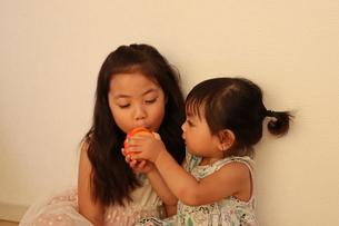 おもちゃのかぼちゃで遊ぶ姉妹の写真素材 [FYI03141147]