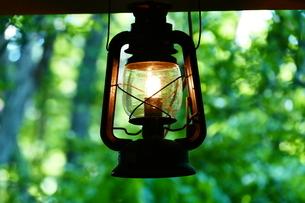 森のランプの写真素材 [FYI03141199]
