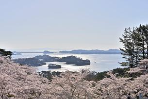 西行戻しの松より望む春の松島 宮城県の写真素材 [FYI03141429]