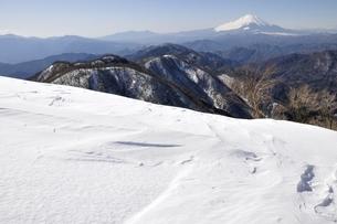 雪の塔ノ岳からの富士山の写真素材 [FYI03141509]