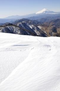 雪陵の塔ノ岳より雪富士の写真素材 [FYI03141510]