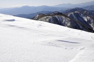 雪陵の塔ノ岳と鍋割山稜の写真素材 [FYI03141511]