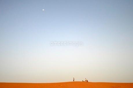 サハラ砂漠の写真素材 [FYI03141700]