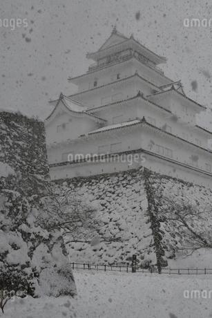 鶴ヶ城 会津若松の写真素材 [FYI03141739]