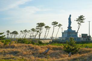 荒浜海岸の風景(宮城県仙台市)の写真素材 [FYI03141802]