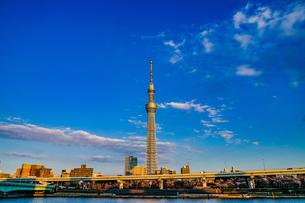 東京スカイツリーと晴天の空の写真素材 [FYI03141861]