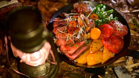 栄養バランスの取れたキャンプ飯のステーキ丼の写真素材 [FYI03142301]