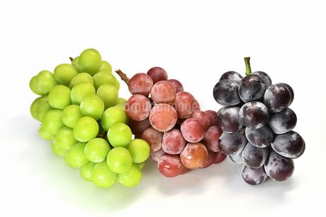 三種類の葡萄の写真素材 [FYI03142447]