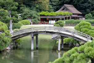 後楽園の木橋の写真素材 [FYI03142502]