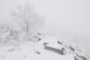 豪雪の丹沢山地の写真素材 [FYI03143215]