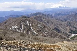富士山と残雪の丹沢山地の写真素材 [FYI03143528]