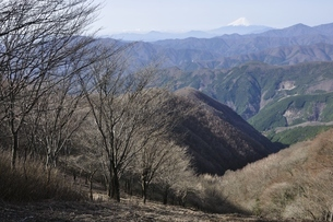 鷹ノ巣山からの富士山遠望の写真素材 [FYI03143716]