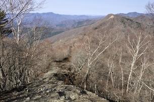 鷹ノ巣山より石尾根と日蔭名栗峰の写真素材 [FYI03143743]