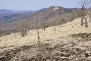 早春の草原と日陰名栗峰の写真素材 [FYI03143798]