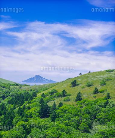 北海道 自然 風景 稚内公園より利尻島遠望 の写真素材 [FYI03143927]