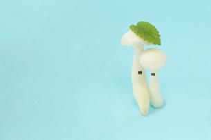 ハーブの葉を乗せた顔のあるかわいい恋するブナシメジのカップルの写真素材 [FYI03144017]