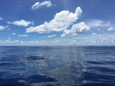 太平洋  iPhoneによる撮影の写真素材 [FYI03144440]