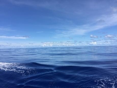 太平洋  iPhoneによる撮影の写真素材 [FYI03144442]