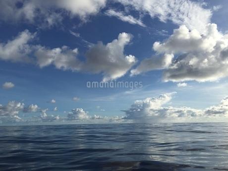 太平洋  iPhoneによる撮影の写真素材 [FYI03144448]