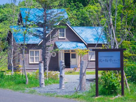 北海道 自然 風景 北の桜守りパークの写真素材 [FYI03144543]
