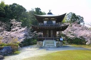 桜咲く勧修寺の写真素材 [FYI03145226]