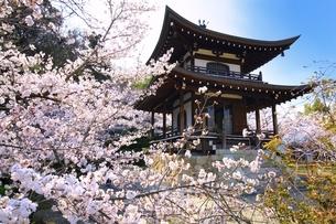 桜咲く勧修寺の写真素材 [FYI03145228]
