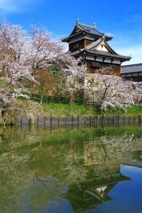 桜咲く郡山城の写真素材 [FYI03145233]