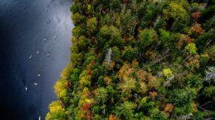 紅葉と湖の写真素材 [FYI03145350]