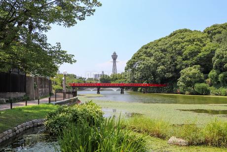 大阪・天王寺公園の写真素材 [FYI03145354]