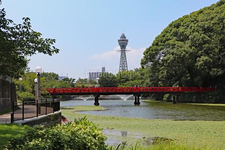 大阪・天王寺公園の写真素材 [FYI03145355]