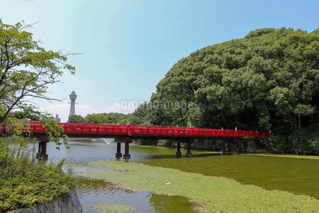 大阪・天王寺公園の写真素材 [FYI03145357]