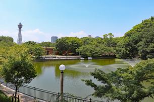 大阪・天王寺公園の写真素材 [FYI03145367]