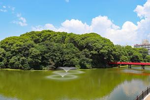天王寺公園・茶臼山と河底池の写真素材 [FYI03145370]