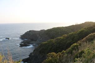 伊豆 石廊崎 海岸線の写真素材 [FYI03145376]