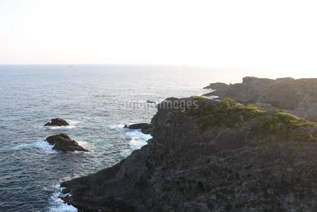 伊豆 石廊崎 海岸線の写真素材 [FYI03145379]