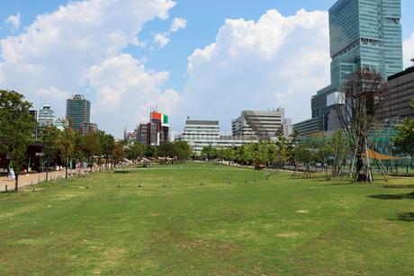 街の公園の芝生広場の写真素材 [FYI03145380]