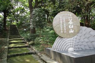 天王寺公園・茶臼山の写真素材 [FYI03145404]